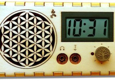 stethoscop electronic biodynamic